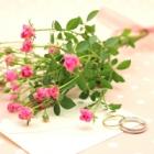 後悔しない結婚指輪の選び方と重要なポイント